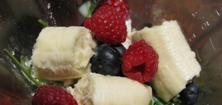 fruit in a blender