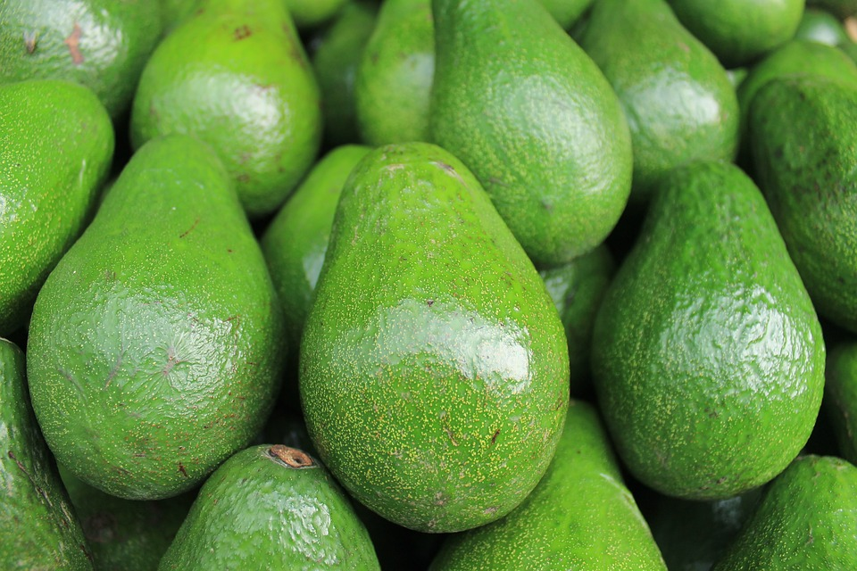 green-avocado