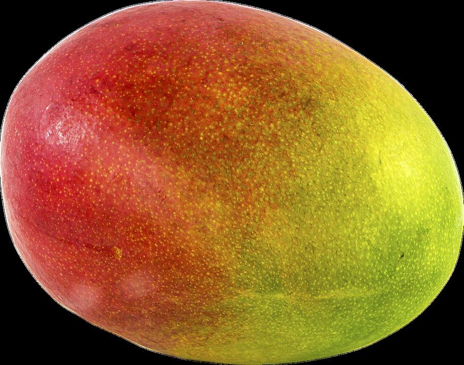 Single Mango Fruit