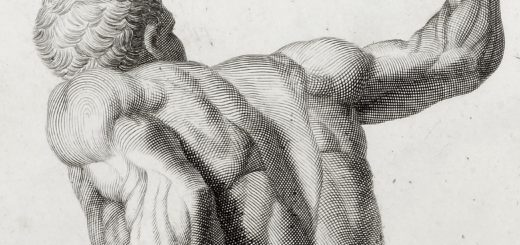 Sketch of man's muscular back