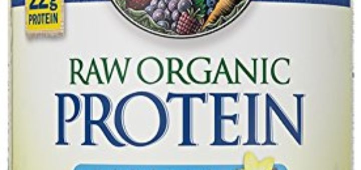 Honest Garden Of Life Raw Protein Review Smoothie Gains